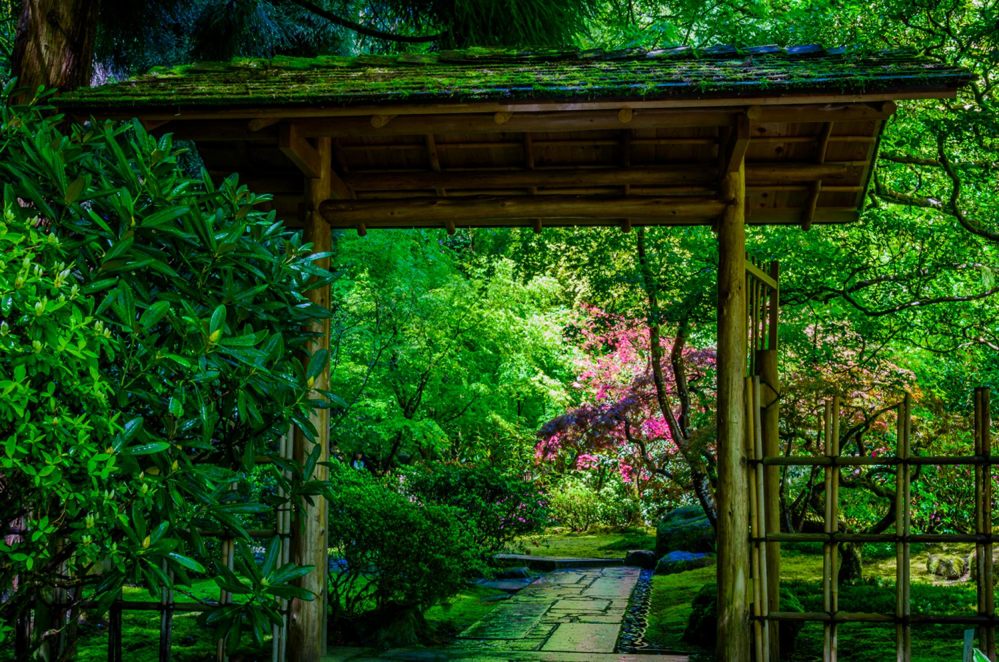 Un jardín japonés en Santiago